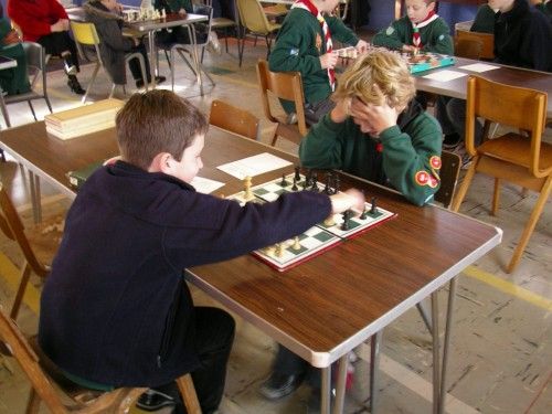 Playing chess at the Cambridge District Cub Championships