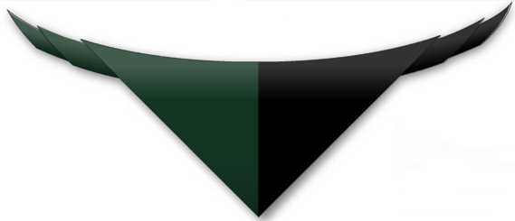 Our neckerchief is green and black